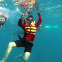 Genius English student's outdoor activity- Oslob Trip